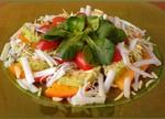 salat-svegest